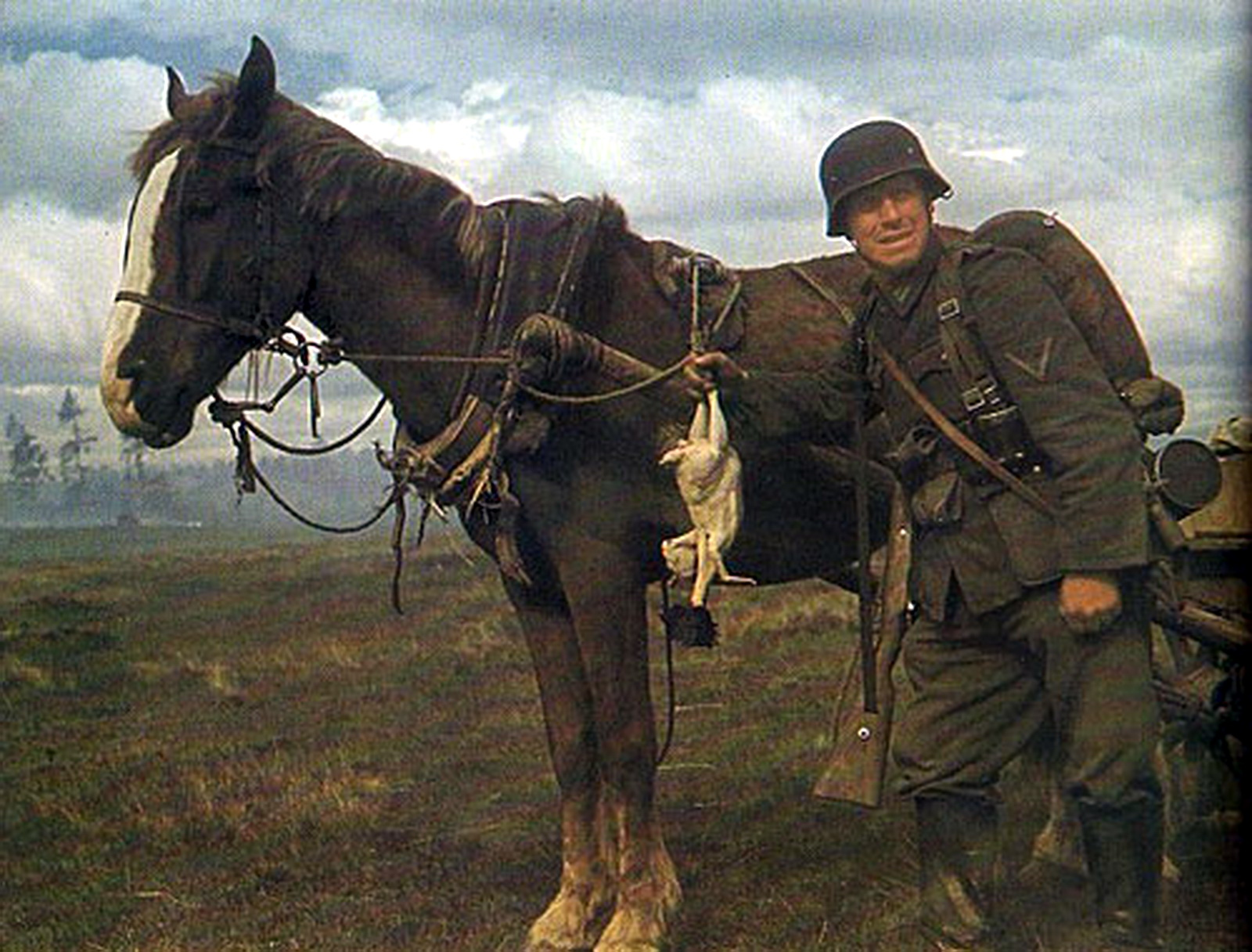german soldier horse k98.jpg
