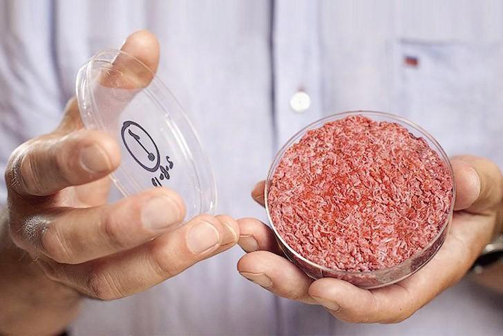 6. «Ваше пристрастие к мясу убивает планету (но мы знаем, как это исправить)» — такое говорящее назв