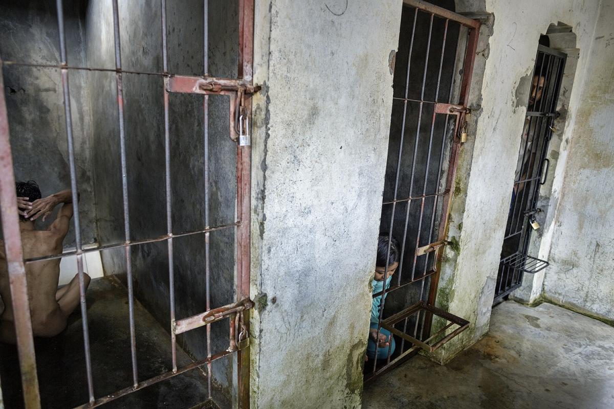 Агус, Лиана и Джармоко содержатся в клетках в Центре нетрадиционной медицины. Владелец «клиники» Джа