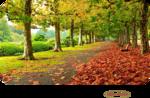 Mina@.4225.Mist paesaggio autunno.09.png