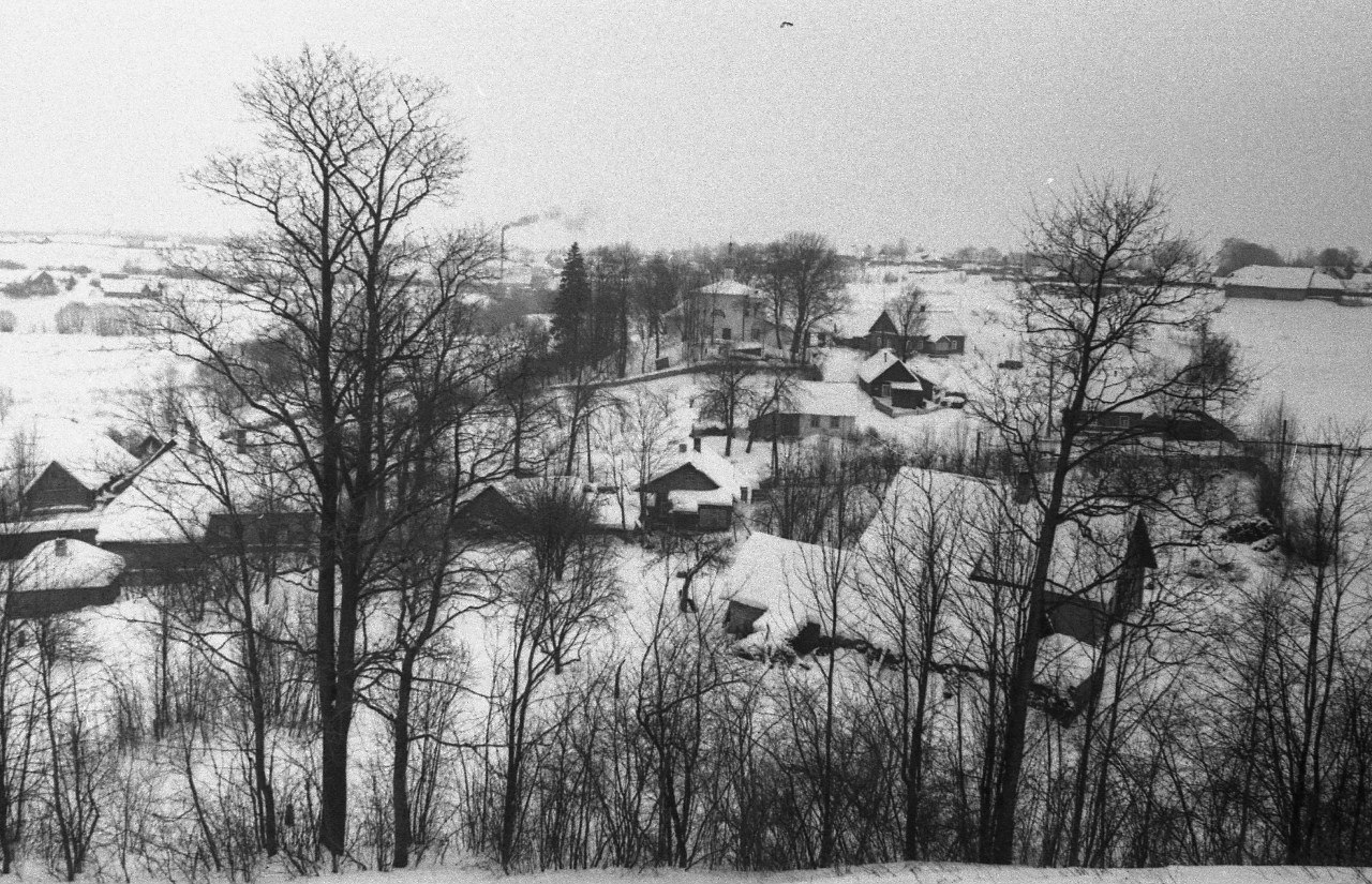 Изборск. Вид от крепости на ц. Рождества Пресв. Богородицы