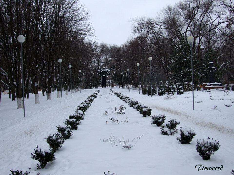 Парк-им.-В.И,-Ленина-0.jpg