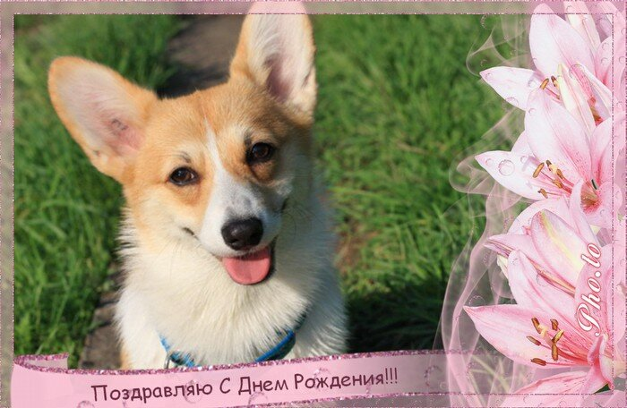 http://img-fotki.yandex.ru/get/21/76008429.50/0_5decd_b8335fc3_XL.jpg