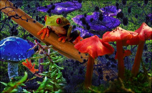 Annathedreamer — «Краски жизни» на Яндекс.Фотках