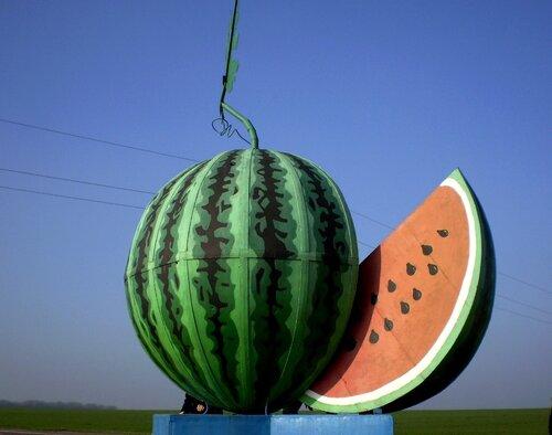 golaya-pristan-semena-arbuza