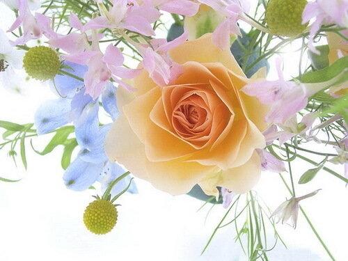 З днем народження! Квіти - для Вас!