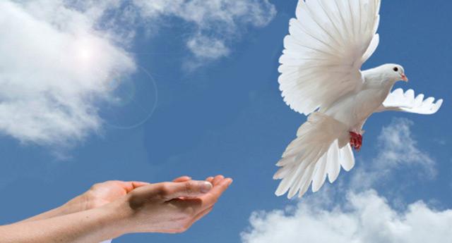 21 сентября — Международный день мира. Выпущен Голубь
