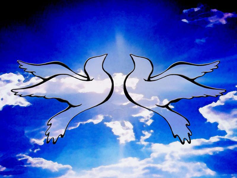 21 сентября — Международный день мира. Голуби в небе!