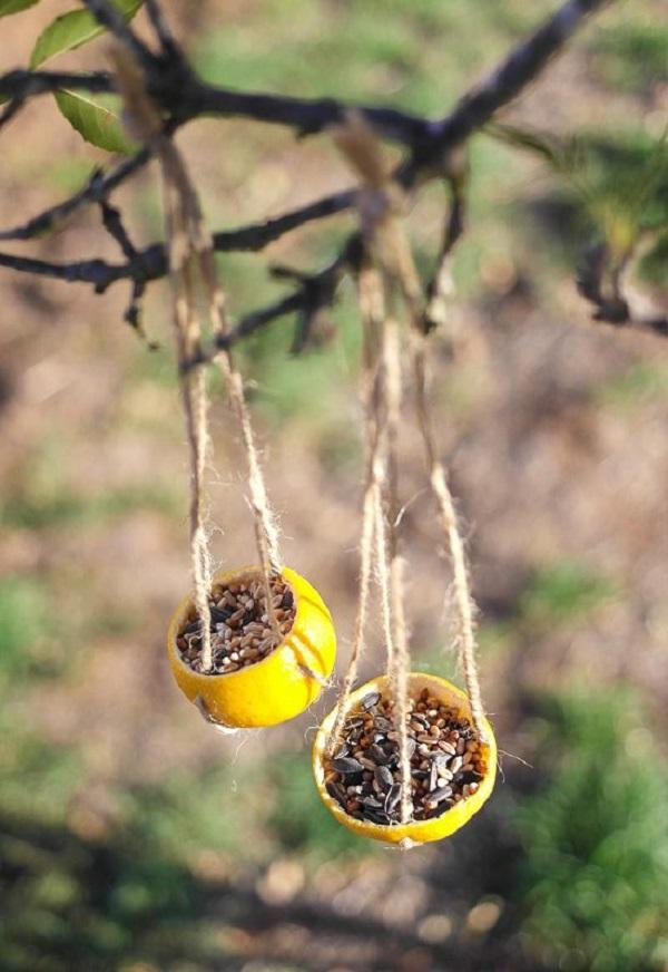 Спиртовая настойка мандариновой кожуры, а также водный настой или отвар применялись в восточной