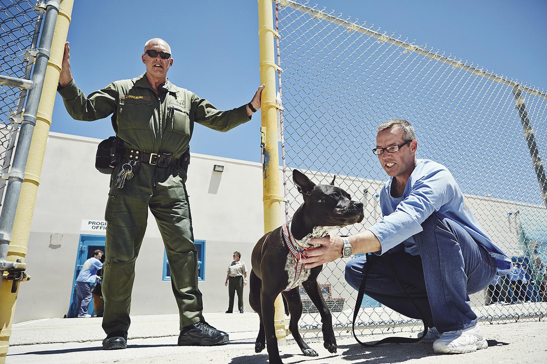Дюбуа признается, что благодаря собакам он увидел в преступниках человечность: «Во время программы м