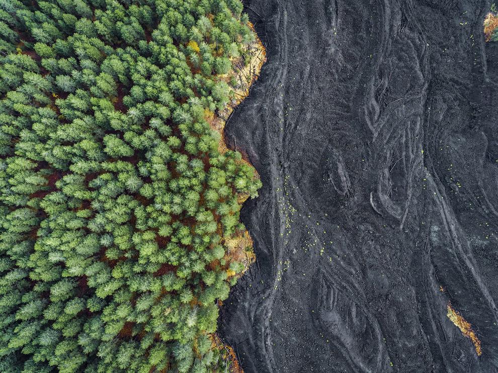 10. Ночной охотник. (Фото J. Schloesser | National Geographic Travel Photographer of the Year C