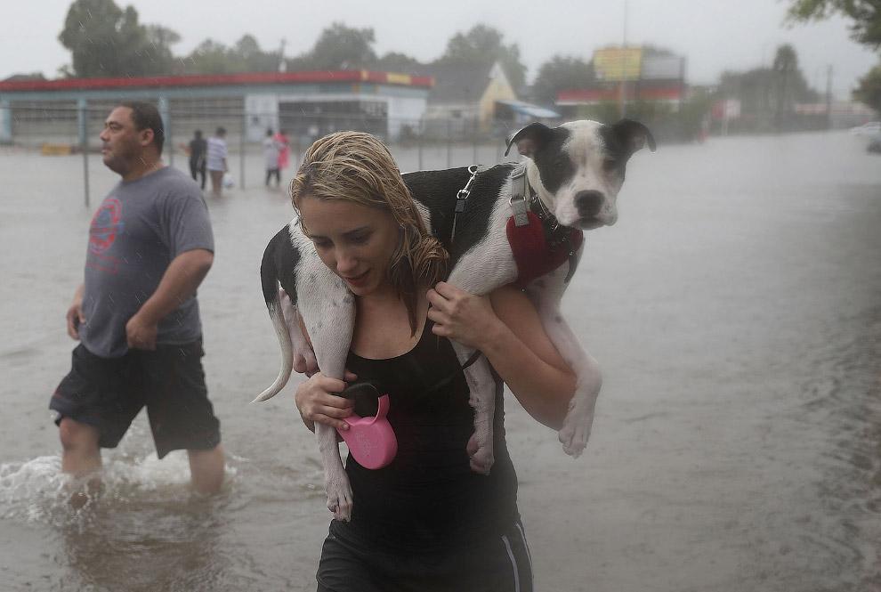 4. (Фото Jonathan Bachman | Reuters):