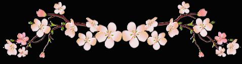 【背景挂件分隔线素材篇】漂亮的分隔线 第13辑 - 浪漫人生 - .