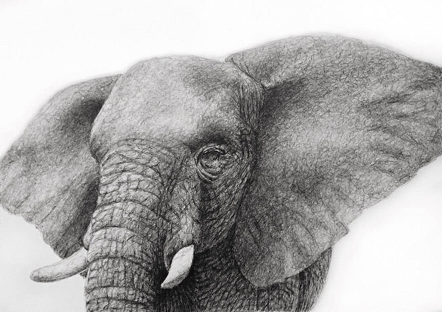 From Celebrities to Animals Incredible Dots Artworks