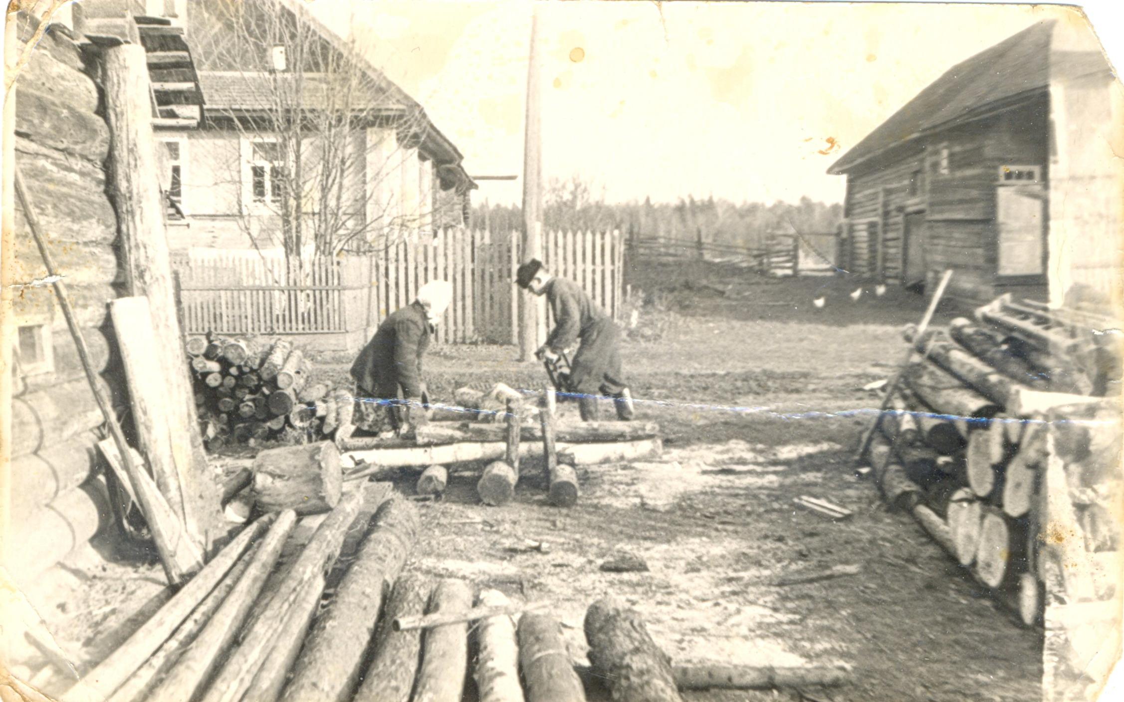 1960-е. Во дворе у Журавлевых