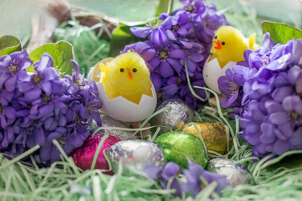 О весне и новой жизни!