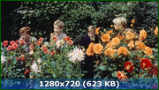 http//img-fotki.yandex.ru/get/214545/170664692.155/0_1803_f6943b74_orig.png