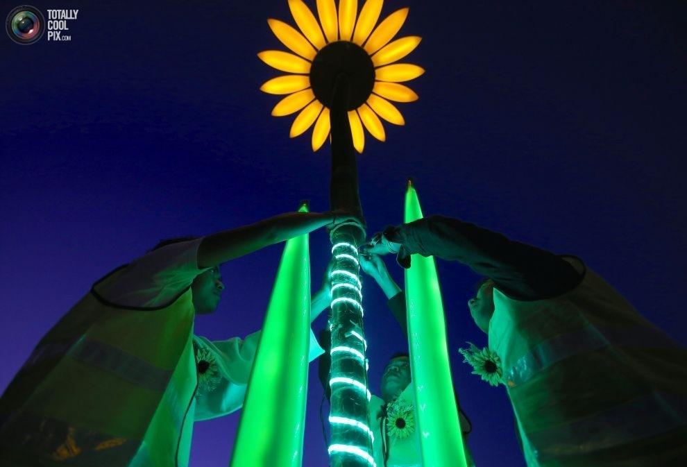 Рабочие устанавливают инсталляцию в Королевском ботаническом саду перед открытием фестиваля Vivid Sy