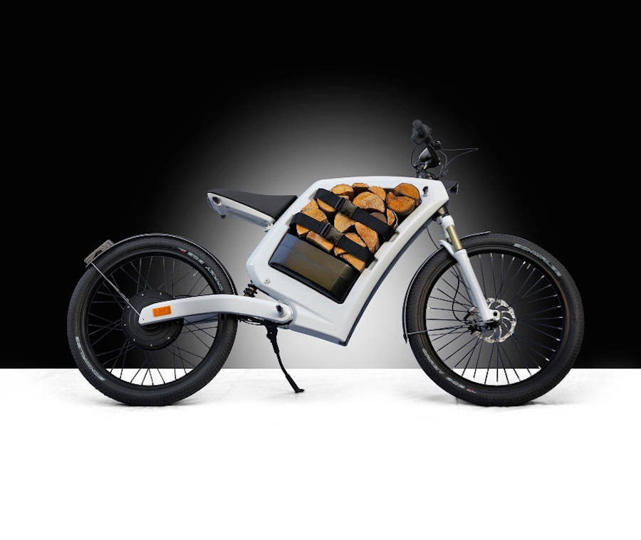 Electric Cargo Bike (8 pics)