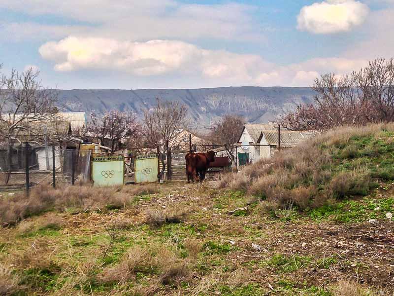 Весна в селе Наниково