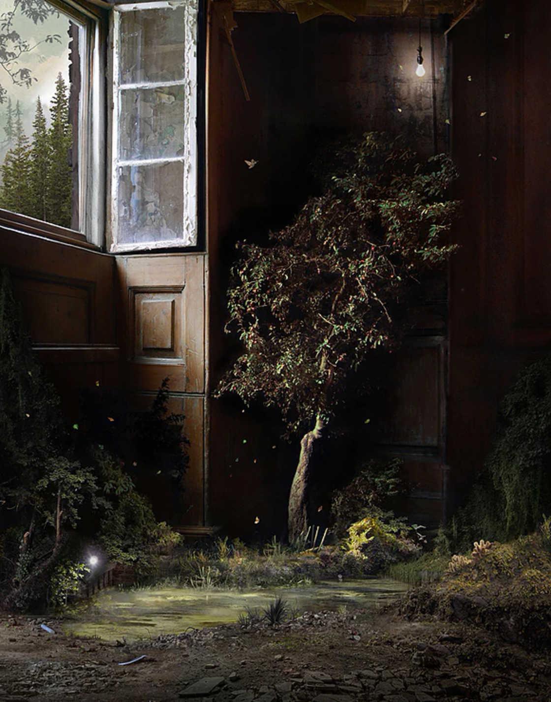 Quando a natureza invade lugares abandonados