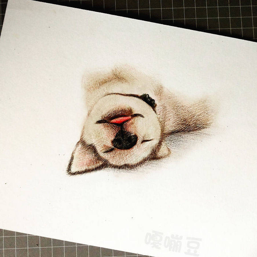 Adorable Animals Drawings to Cure Unhappiness