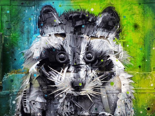 Big Raccoon 3D Street Art (5 pics)