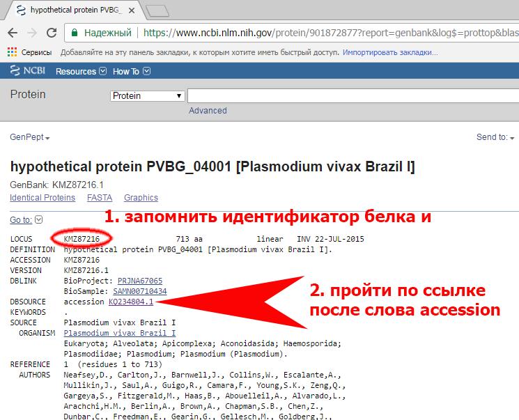 https://img-fotki.yandex.ru/get/215222/158289418.40d/0_17908c_a59506f5_XL.png