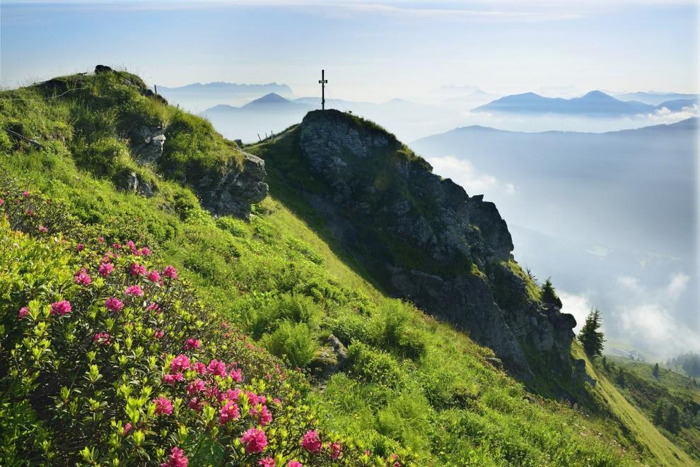 Цветение сакуры в префектуре Ямагата в Японии. Остров Хонсю известен своими горами, горячими источни