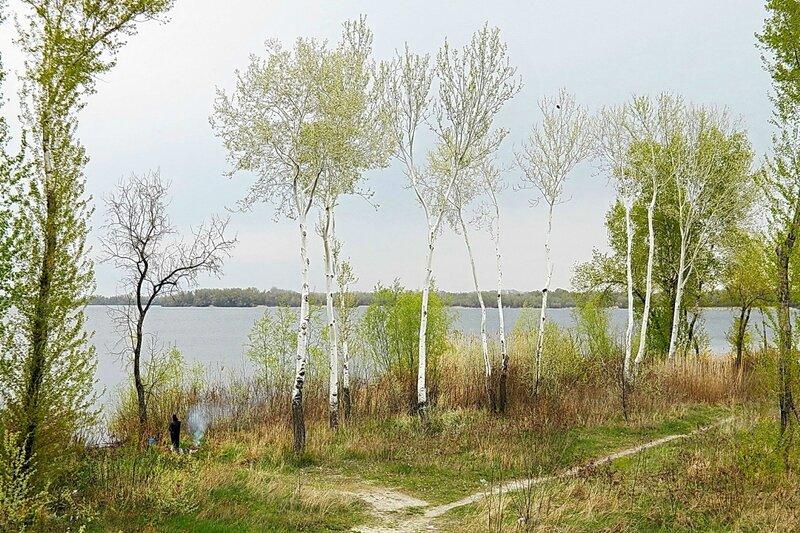 Апрельский день у реки