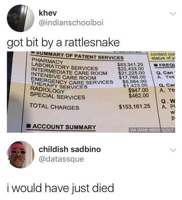 Просто укусила змея, счет за медицинские услуги