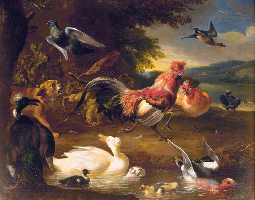 Chickens and Ducks, by Melchior d' Hondecoeter