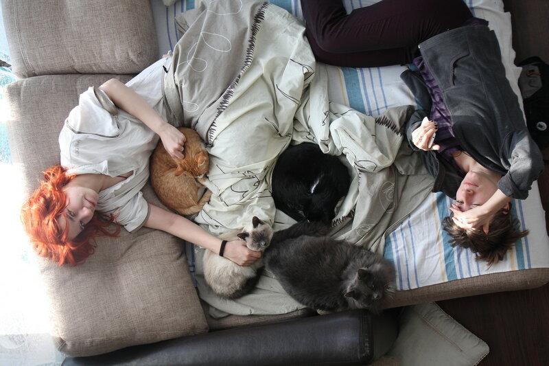 1. Женщины и кошки. Хотьково, Московская область.JPG