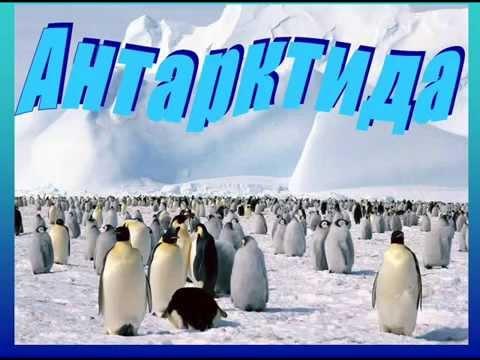 Открытки. С Днем полярника! Антарктида! Пингвины!