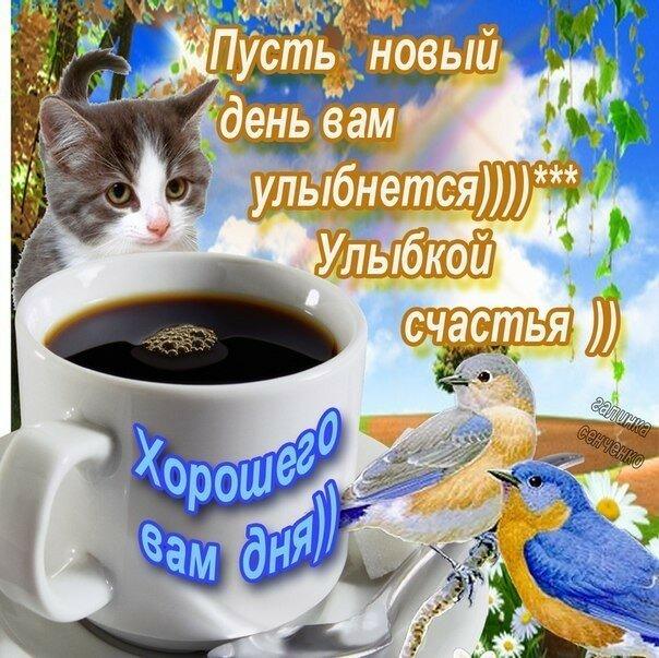 https://img-fotki.yandex.ru/get/215803/27156178.224/0_1ab91f_3e9c3314_XL.jpg