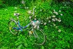 Велосипедик из Ромашково
