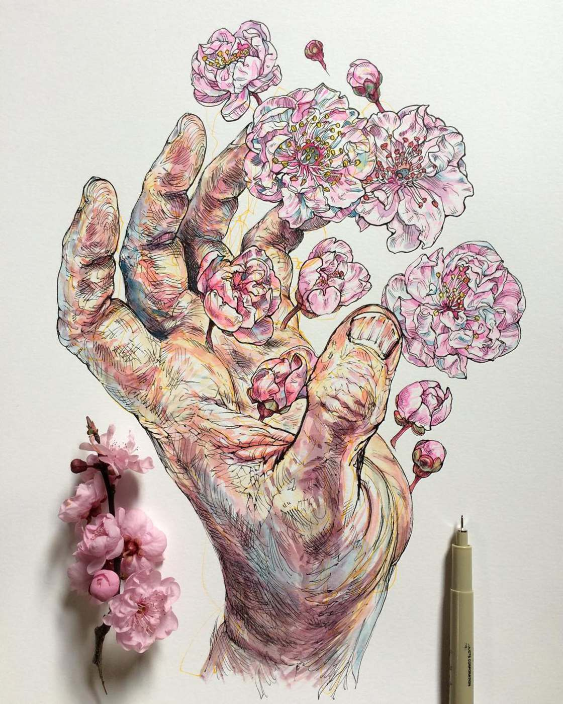 Hands and Flowers - The poetic illustrations by Noel Badges Pugh
