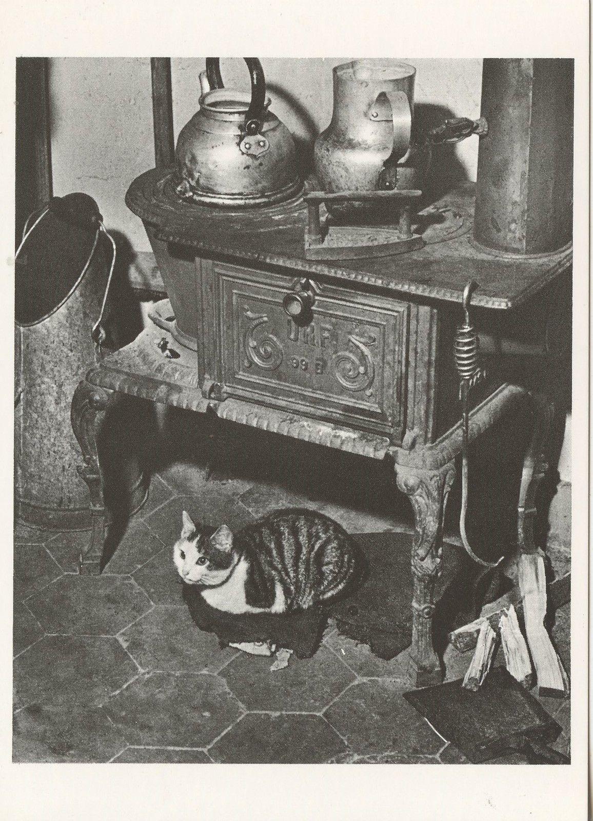 1980. Кошка греется у печки