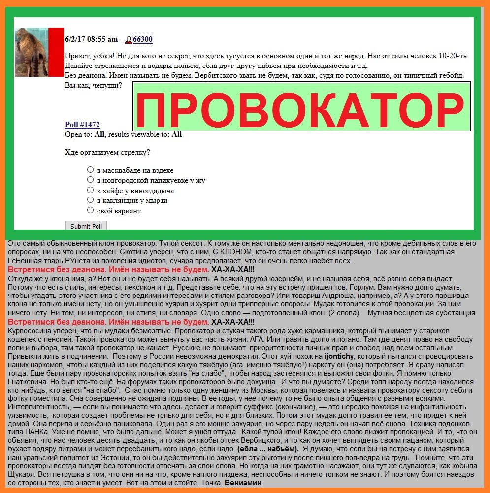 Провокация, Провокатор 66300, Клоны, Аноны, Сексоты, ЛЖР