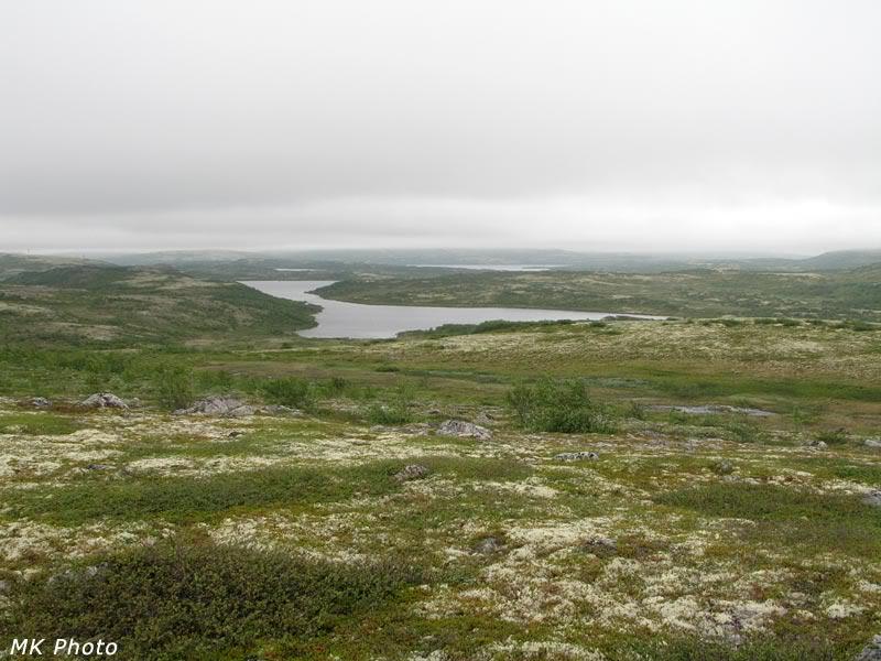 Залив на севере Рунгозера