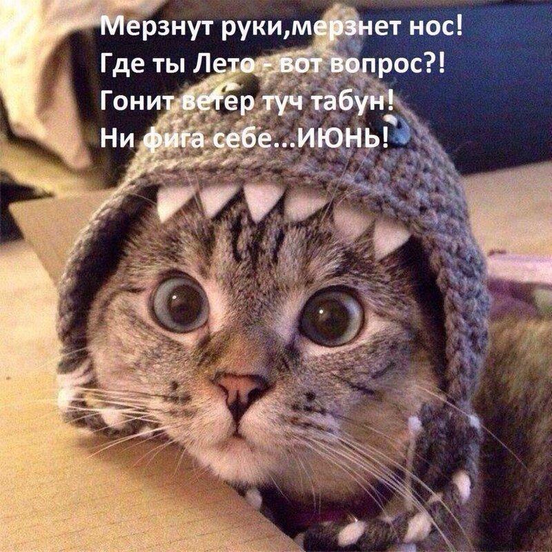 https://img-fotki.yandex.ru/get/216168/140132613.5e0/0_224cb8_50ccd3d4_XL.jpg