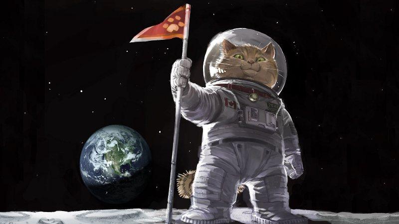 космос-кот-2.jpg