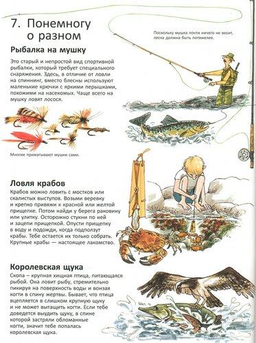 https://img-fotki.yandex.ru/get/216168/19411616.5b0/0_125f7e_b2f73590_L.jpg