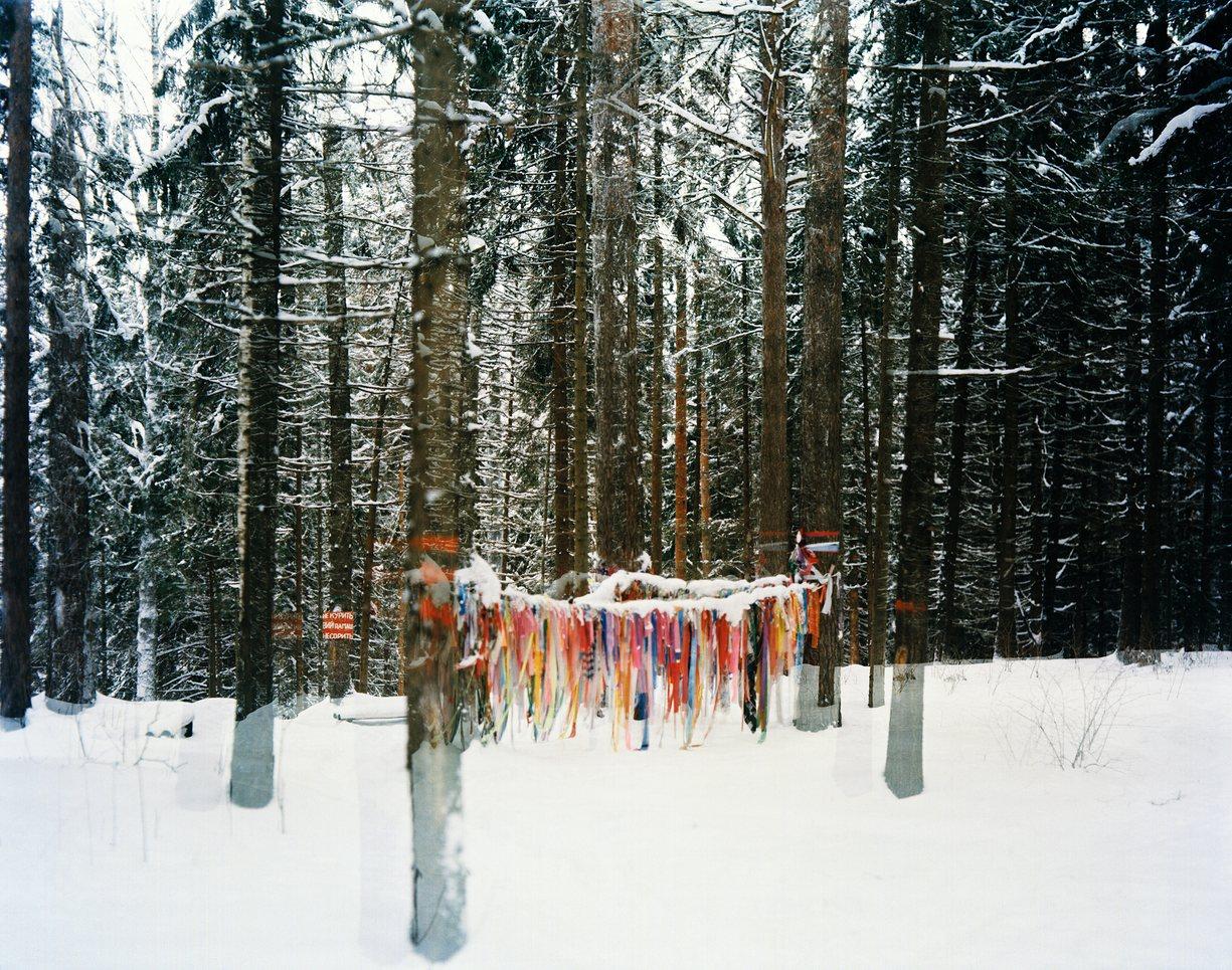 Лентами на деревьях отмечают священные места.