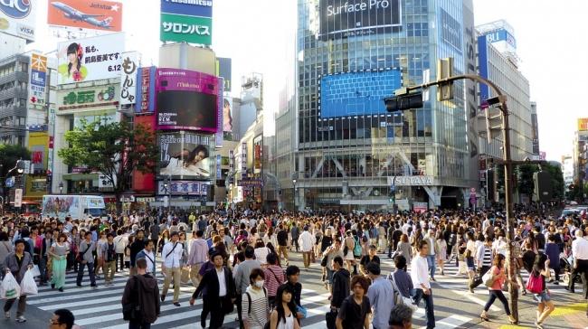 © pixabay.com  Японцы едва знают историю XXвека. Период отHomo erectus донаших дней вяпонс