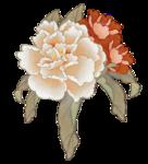 mou_oriental flower.png