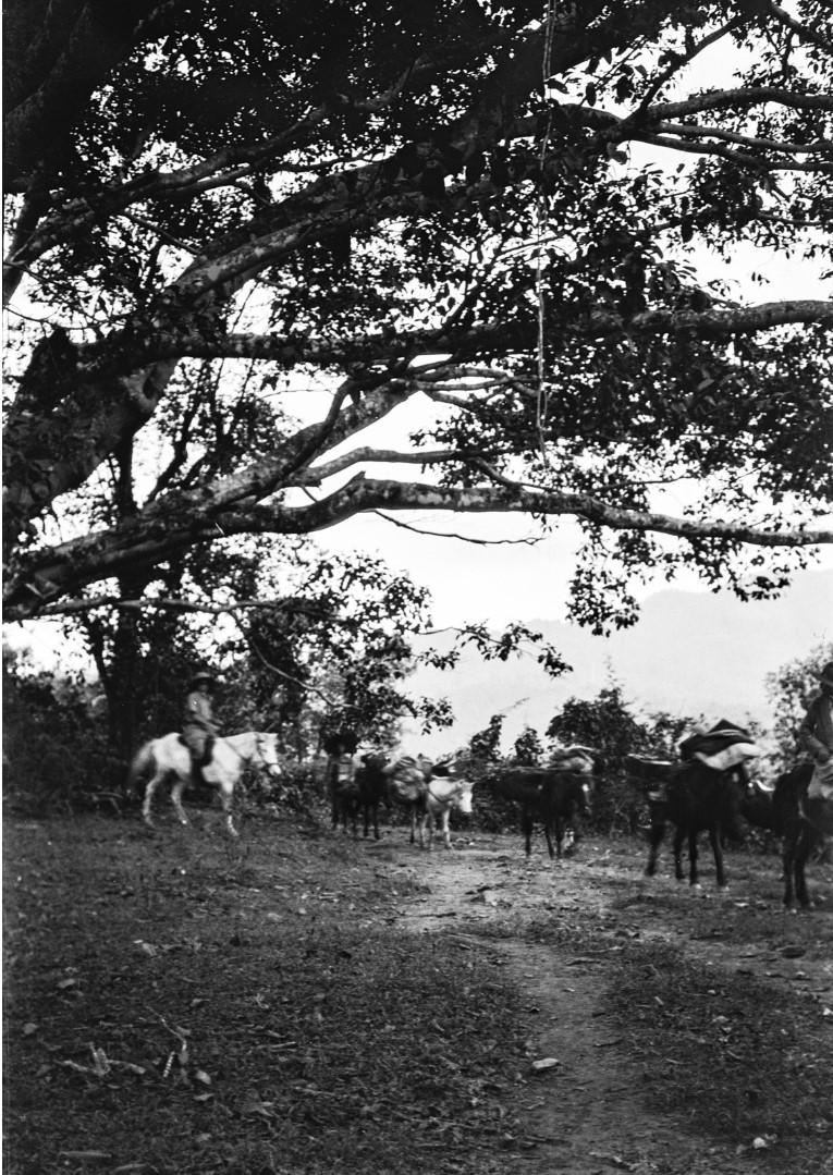 1043.Люди на лошадях