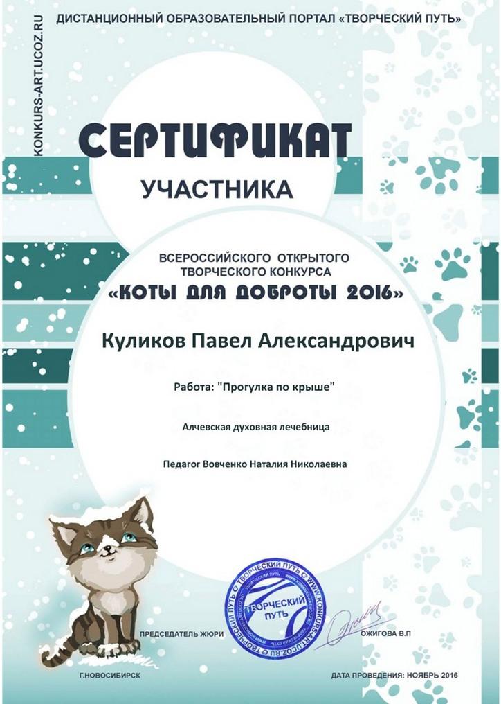 Куликову Павлу - Сертификат участника!