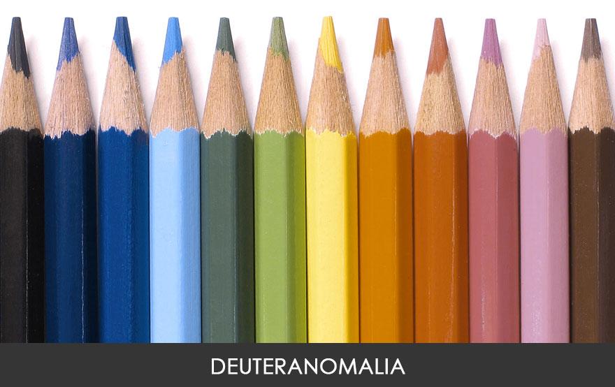 Это самый распространённый тип цветослепоты. Дейтераномалией страдает примерно 4,63% мужчин и 0,36%