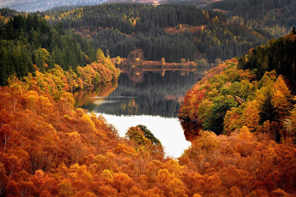 29. Осенняя дорога с высоты птичьего полета, Кельн, Германия. 4 ноября 2016. (Фото Henning Kais
